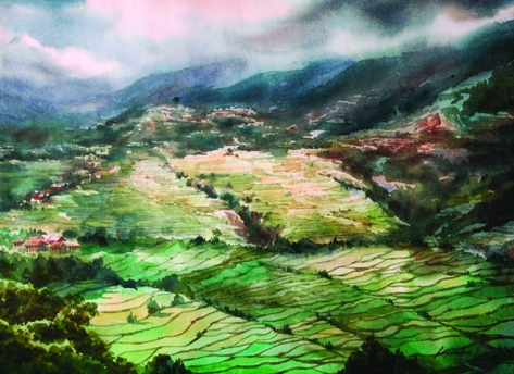 watercolor of terraced rice paddies